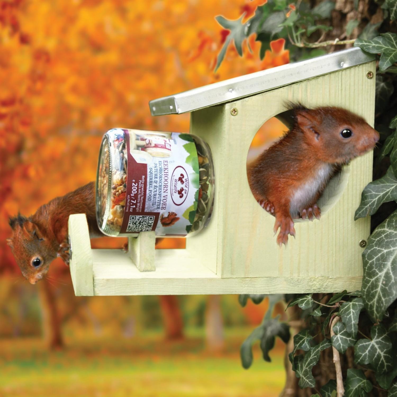 Voederhuis voor eekhoornvoederpot