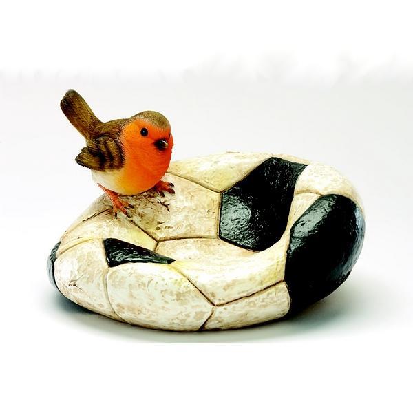 Vogelbadjeroodborst op voetbal