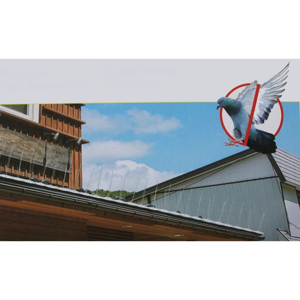 Vogelpinnen voor muren daken en randen
