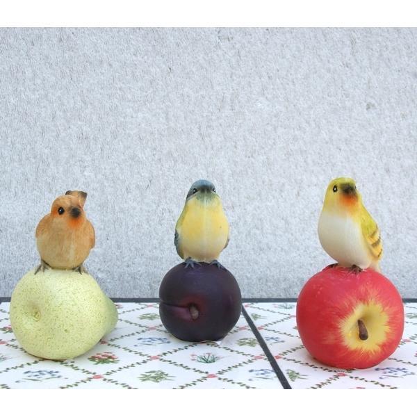 Vogels op fruit