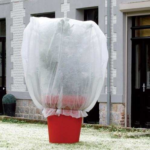 Vorsthoes winterbescherming125 x 2 m