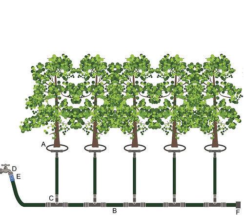 Watergeefsysteem voor jonge bomen struiken30 m