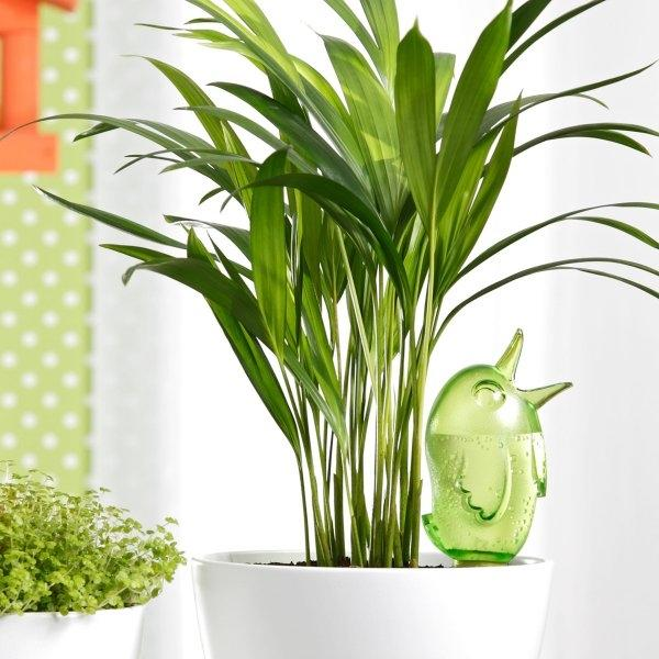 Gietsysteem potplanten vogeltje groen220 ml