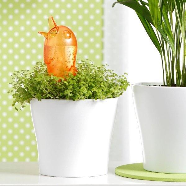 Gietsysteem potplanten vogeltje oranje220 ml