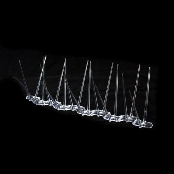 Transparante weringspinnen duiven kraaien200 cm